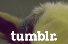 How To Drive Tumblr Traffic On Autopilot featured image
